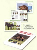 9788798918936: Understanding Your Icelandic Horse: Be in Harmony and Balance with Your Horse