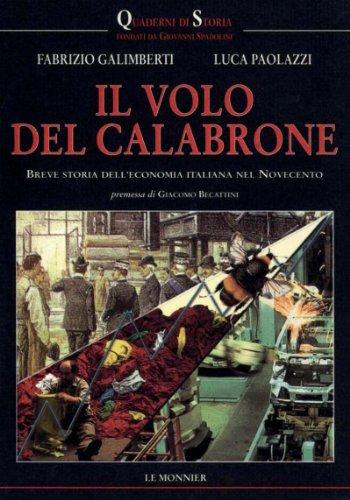 Il volo del calabrone. Breve storia dell'economia italiana del Novecento.: Galimberti,Fabrizio...