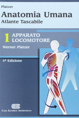 9788808181305: Anatomia umana. Apparato locomotore. Atlante tascabile