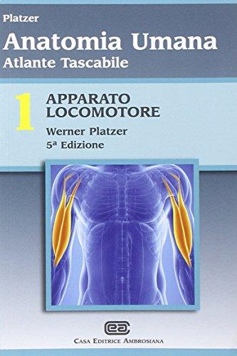 9788808181527: Atlante tascabile di anatomia umana. Apparato locomotore (Vol. 1)