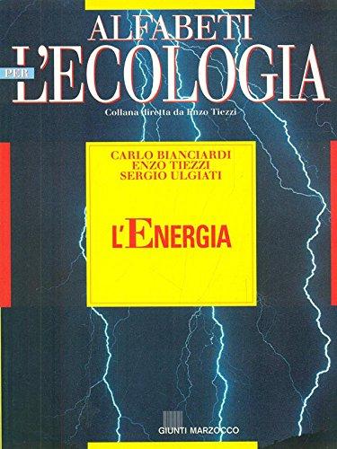 9788809006560: L'energia