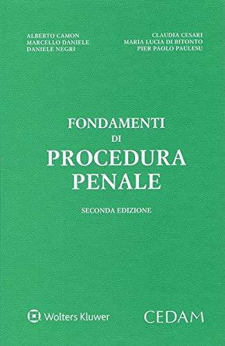 9788813373566: Fondamenti di procedura penale