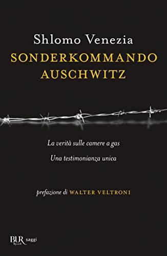 Sonderkommando Auschwitz - Venezia, Shlomo