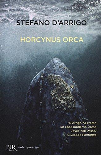 Horcynus Orca (Paperback): Stefano D Arrigo