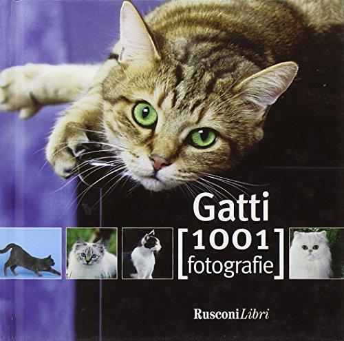 9788818027174: Gatti
