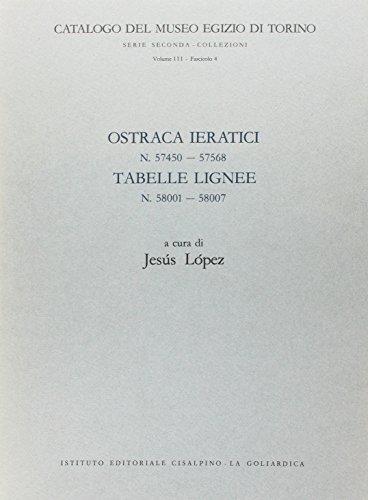 9788820502744: Ostraka ieratici n. 57093-57319 (Museo Egizio di Torino)