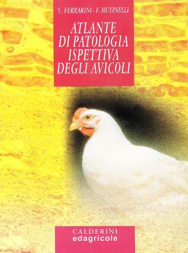 9788820645670: Atlante di patologia ispettiva degli avicoli