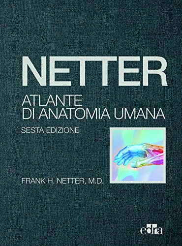 9788821449673: Netter, Atlante di Anatomia Umana - sesta edizione - Telato - 3