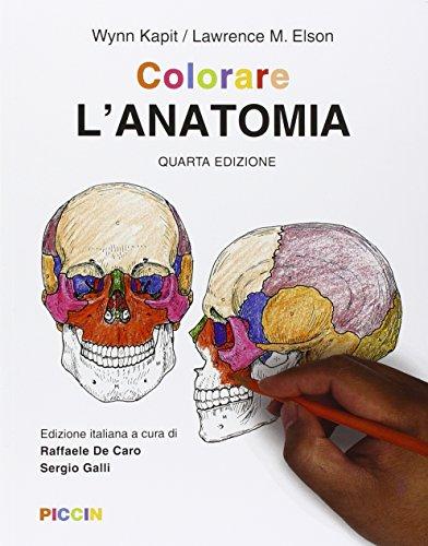 9788829927470: Colorare l'anatomia