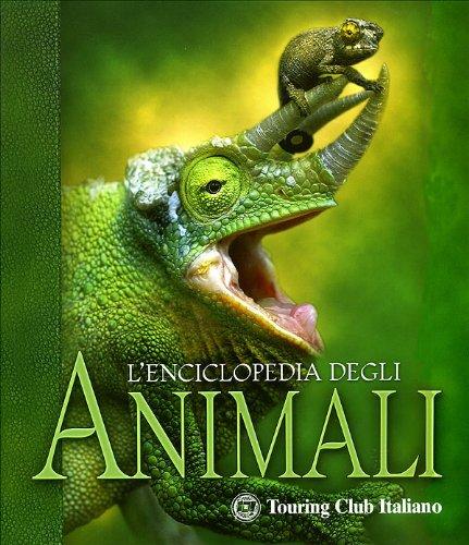 9788836534784: L'enciclopedia degli animali