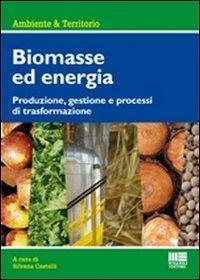 9788838765278: Biomasse per la produzione di energia. Produzione, gestione e processi di trasformazione