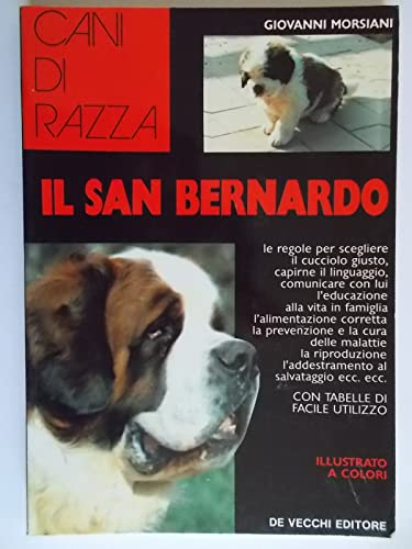 9788841204146: Il San Bernardo