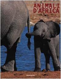 9788843581627: Animali D'africa
