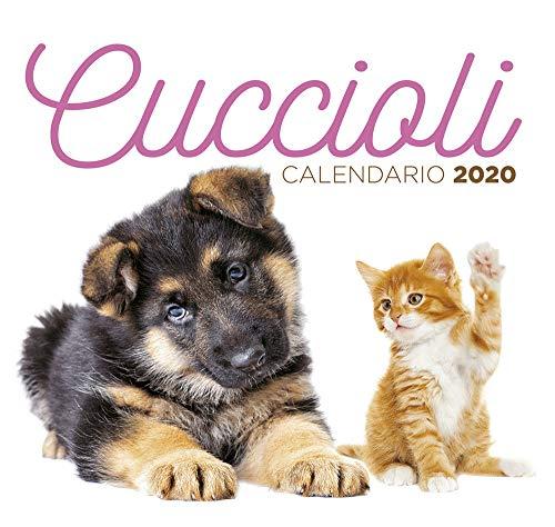 9788844055349: Cuccioli. Calendario desk 2020
