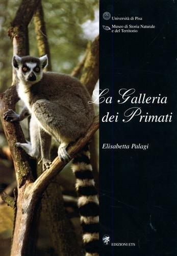 9788846700803: La galleria dei primati