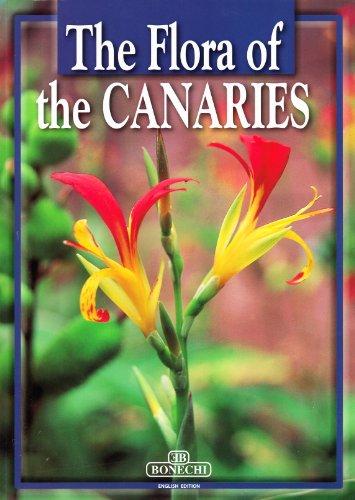 9788847617353: Fiori delle Canarie. Ediz. inglese (Il fantastico mondo della natura)