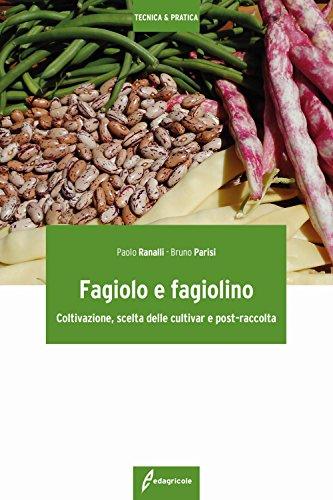 Fagiolo e fagiolino. Coltivazione, scelta delle cultivar: Paolo Ranalli; Bruno