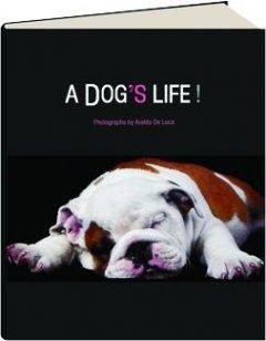 9788854015098: A Dog's Life!