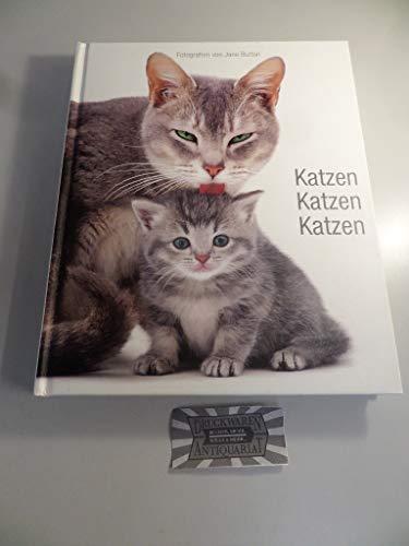 9788854017191: Katzen, Katzen, Katzen