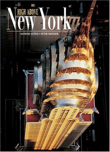 9788854400740: High above New York. Ediz. illustrata (Il mondo dal cielo)