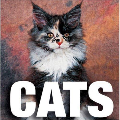 9788854400764: Cats (CubeBook)