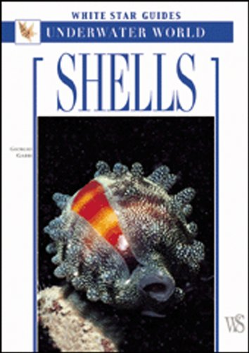 9788854400931: Shells: White Star Guides - Underwater World