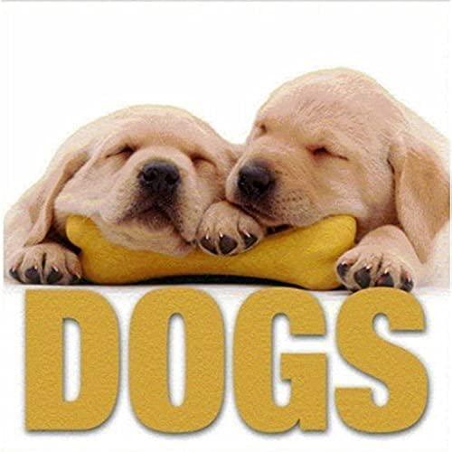 9788854402232: Dogs (MiniCube) (CubeBook)