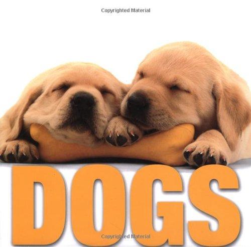 9788854402447: Dogs (Supercubes)