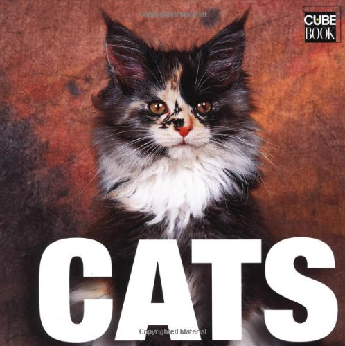 9788854402973: Cats (Supercubebook)