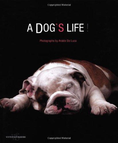 9788854403314: A Dog's Life