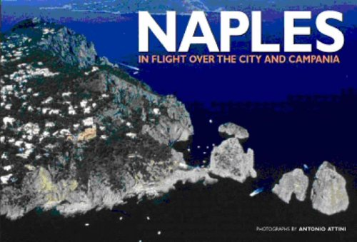 9788854403697: Naples: In Flight Over the City and Campania (Italy from Above)