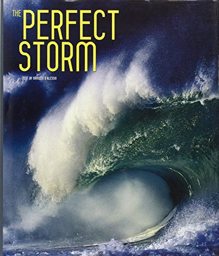 9788854405769: The Perfect Storm