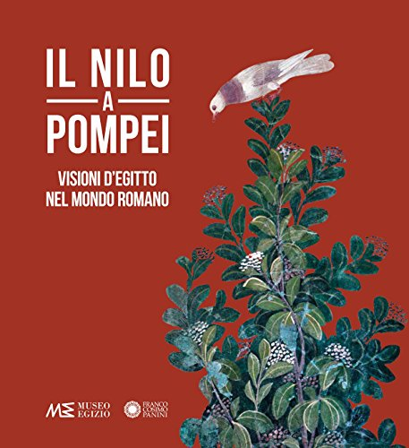 9788857011066: Il Nilo a Pompei. Visioni d'Egitto nel mondo romano