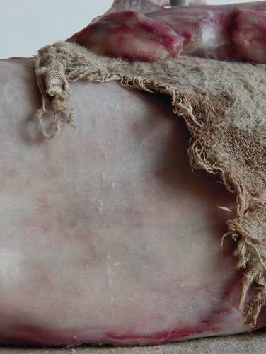 9788857214443: Berlinde De Bruyckere: Romeu, my deer