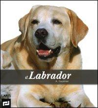 9788859941026: Il labrador. Ediz. illustrata
