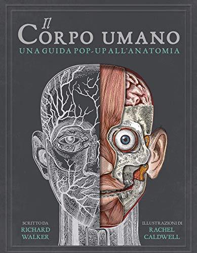 9788860238511: Il corpo umano. Una guida pop-up all'anatomia