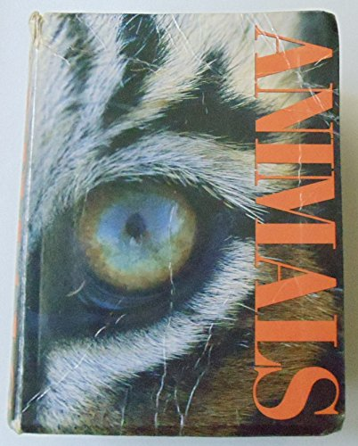 The Little Big Book of Animals: Gill Davies