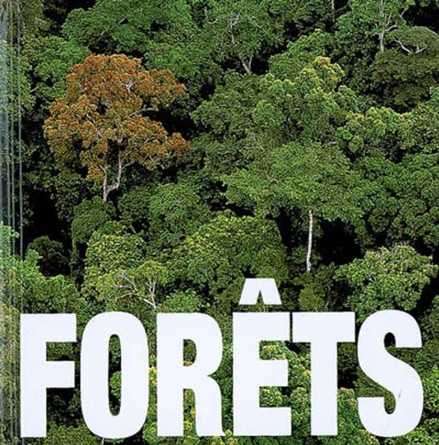 9788861122413: Forêts (Cube Book)