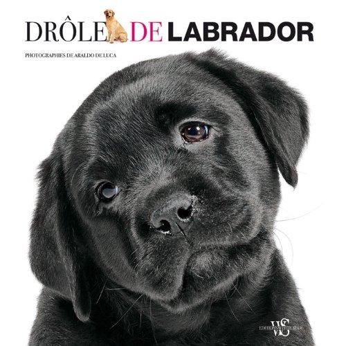 DROLE DE LABRADOR!: LUCA, ARALDO DE