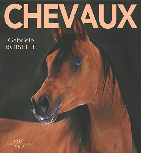 9788861127319: Chevaux