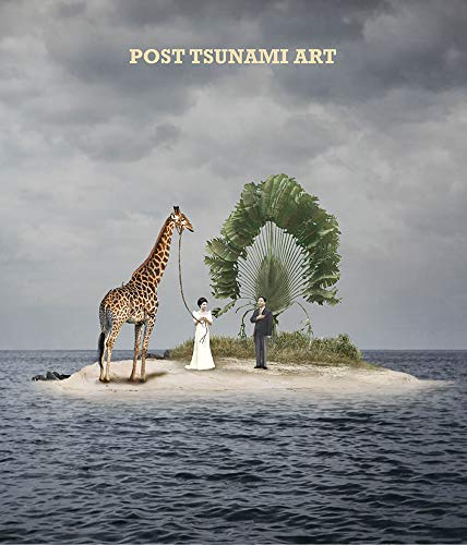 9788862080903: Post-Tsunami Art: Emerging Artists from South-East Asia
