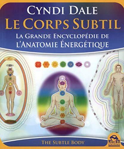 9788862292986: Le corps subtil (Nouvelles pistes thérapeutiques)