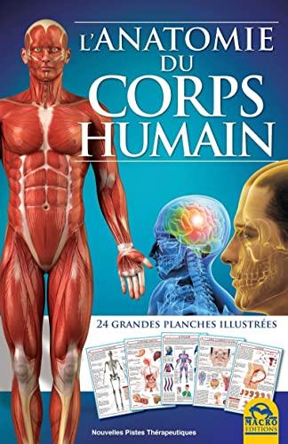 9788862297196: L'anatomie du corps humain : 24 grandes planches illustrées