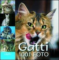 9788862620871: Gatti