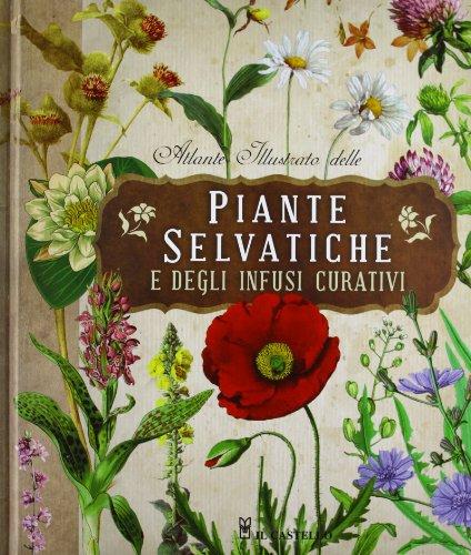 9788865203972: Atlante illustrato delle piante selvatiche e degli infusi curativi