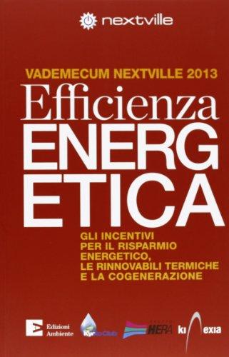 9788866270904: Efficienza energetica. Gli incentivi per il risparmio energetico, le rinnovabili termiche e la cogenerazione