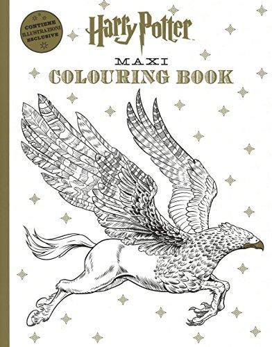 9788868219277: Harry Potter maxi colouring book