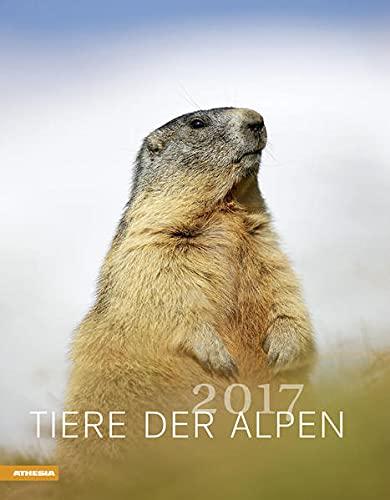 9788868391553: Tiere der Alpen 2017