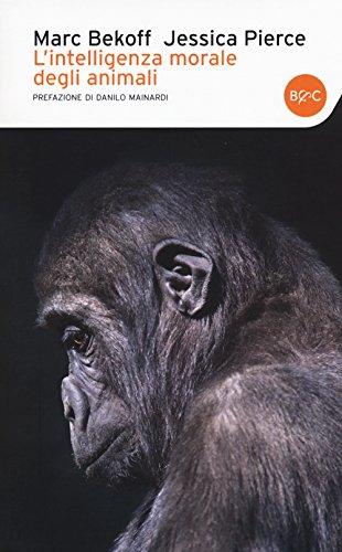 9788868521141: L'intelligenza morale degli animali