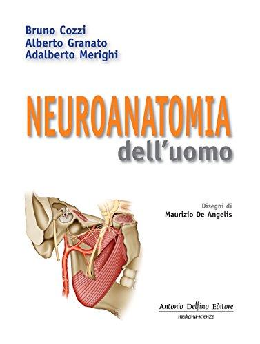 9788872874097: Neuroanatomia dell'uomo